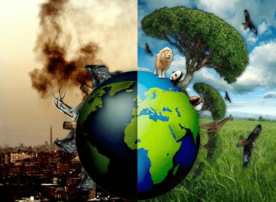 Thực trạng môi trường trên thế giới hiện nay