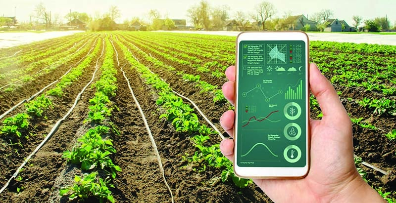Sử dụng IoT cho nông nghiệp